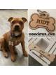 Dog bone with own name